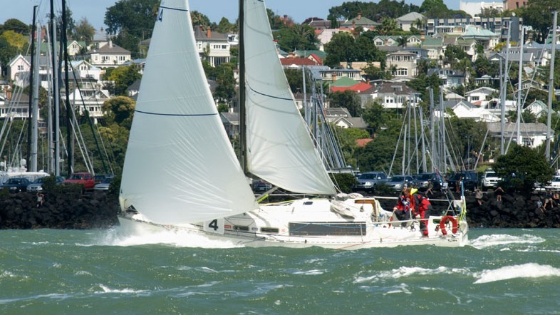 Pelagian starting the round NZ race